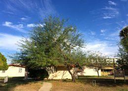 Villa Pacifica Apartments In Phoenix Arizona